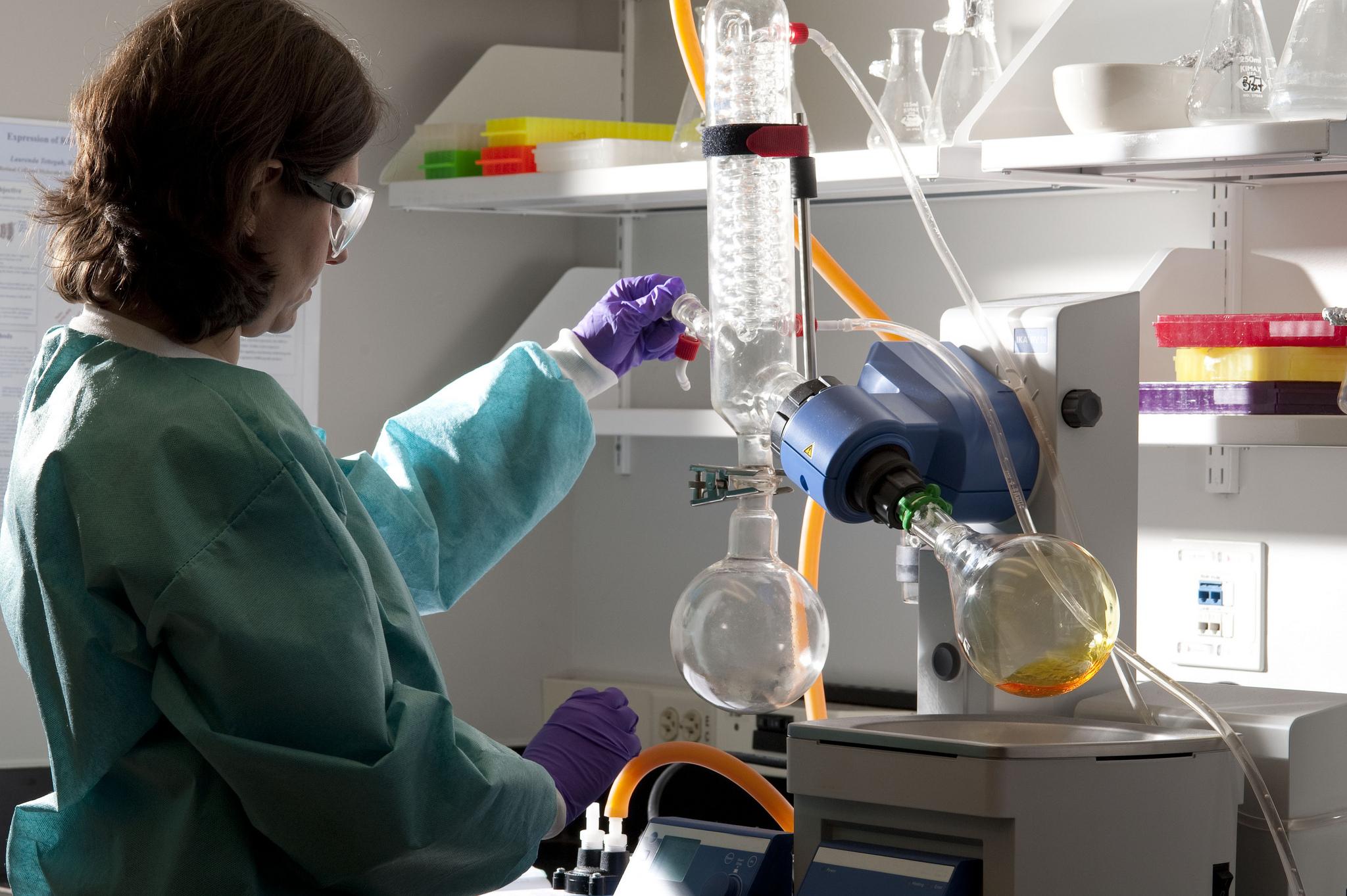 「ips細胞 創薬 イメージ画像  フリー」の画像検索結果