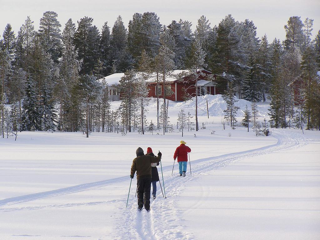 Классический бег на лыжах