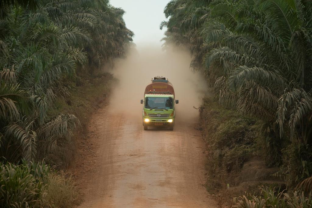 Перевозка пальмового масла