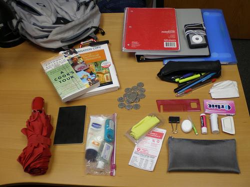 Содержимое сумки после обыска