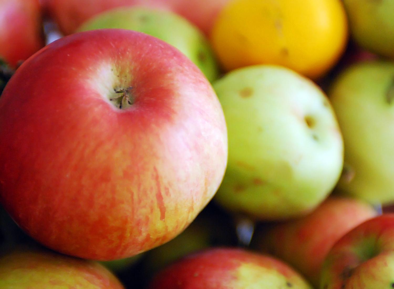 российские яблоки