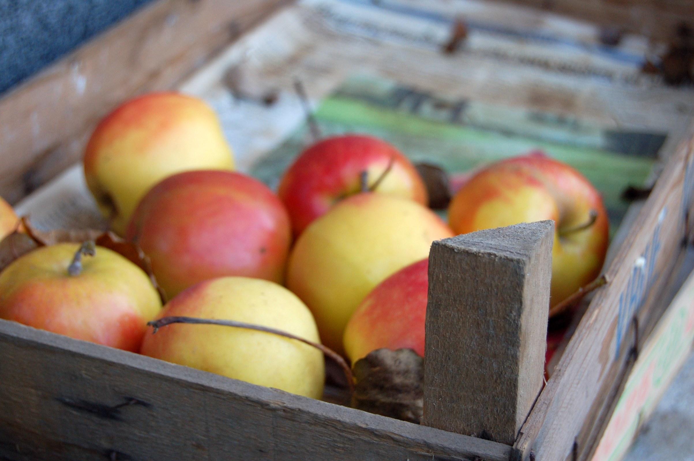 яблоки в коробке