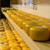 Как выбрать сыр без пальмового масла?