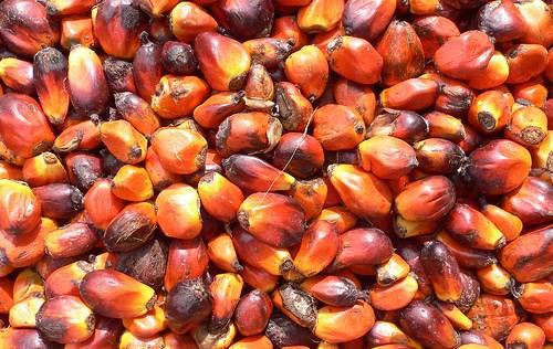 Транс-жиры не содержатся в пальмовом масле